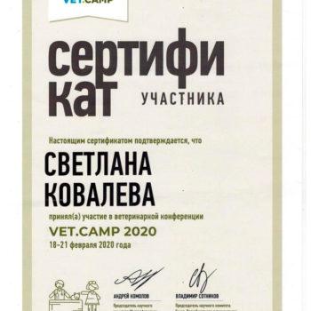 Ковалева Светлана ветеринар кардиолог